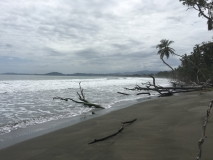 Beach in Cahuita National Park