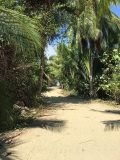 Entering the beach at Marino Ballena National Park