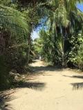 Entering the beach at Marino Ballena National Park